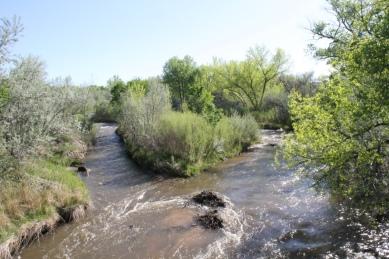 Ojo Caliente River