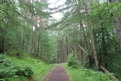 Loch Voil Trail