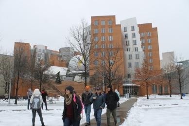 Ray and Maria Stata Center / Frank Gehry